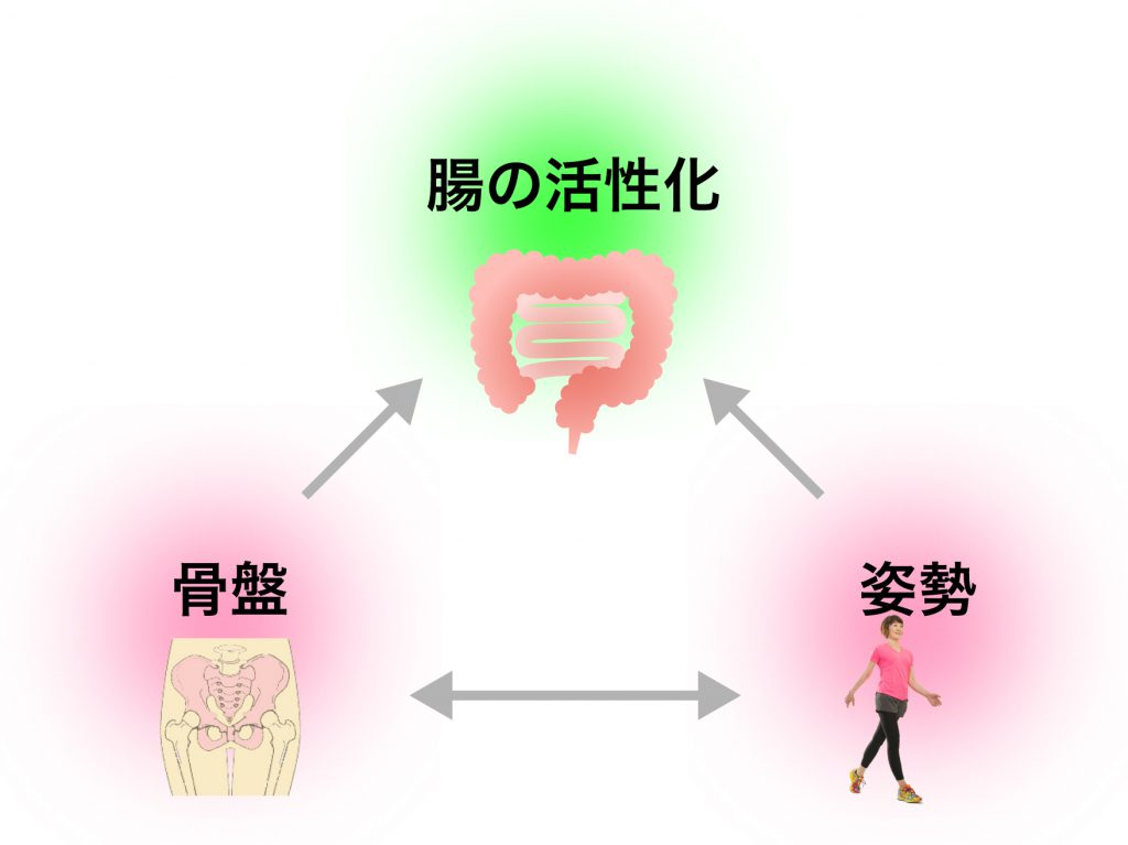 kotsubanchouseitoha_image6