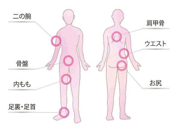 身体の部位名
